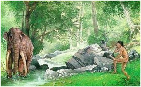 L'uomo del Paleolitico medio a caccia di Elephas Antiquus