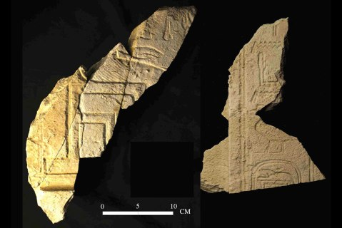 I frammenti trovati nella tomba reale con il nome del faraone Sokekhotep (XIII din.)