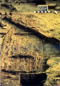 Lo scavo della barca romana di Corte Cavanella a Loreo in Polesine