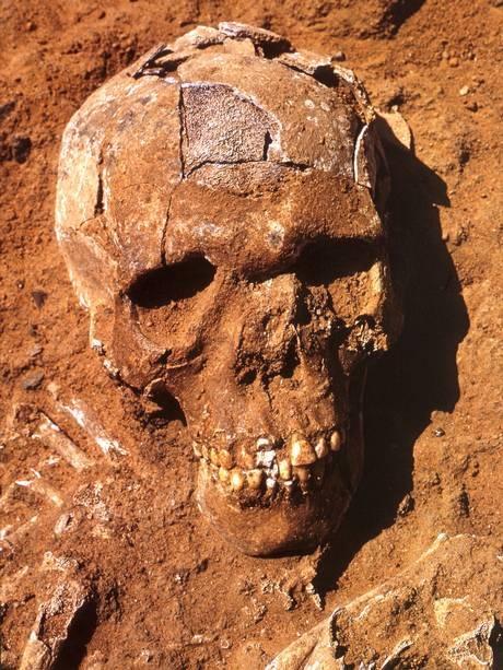 Uno scheletro riportato alla luce a Jebel Sahaba con i segni di un conflitto di 13mila anni fa
