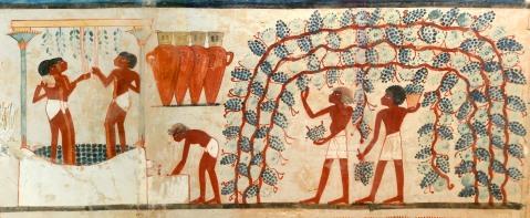 La vitivinicoltura nell'Antico Egitto come appare in una pittura nella tomba di Nakht a Tebe