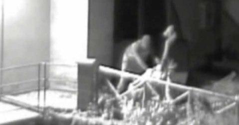 Le telecamere della videosorveglianza hanno ripreso il furto della Sfinge etrusca alata