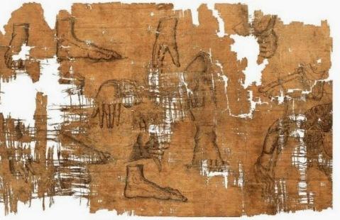 Sul recto del Papiro numerosi disegni di parti anatomiche (verosimilmente copie di parti di statue)