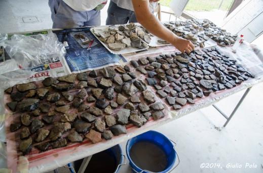 Giù in questa prima campagna di scavo ufficiale sono molti i reperti restituiti dalla terramara di Pilastri