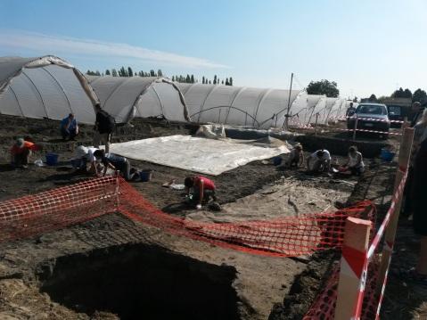 Il fondo Verri di Pilastri di Bondeno dove si sta scavando una terramara del Bronzo medio e recente