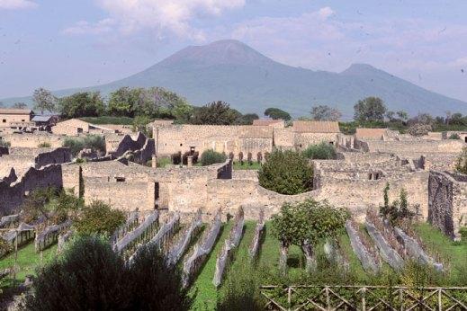 Appuntamento il 22 ottobre agli scavi di Pompei per la 15.ma vendemmia aperta al pubblico
