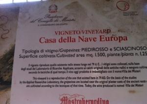 Il cartello del vigneto della Casa della Nave Europa a Pompei