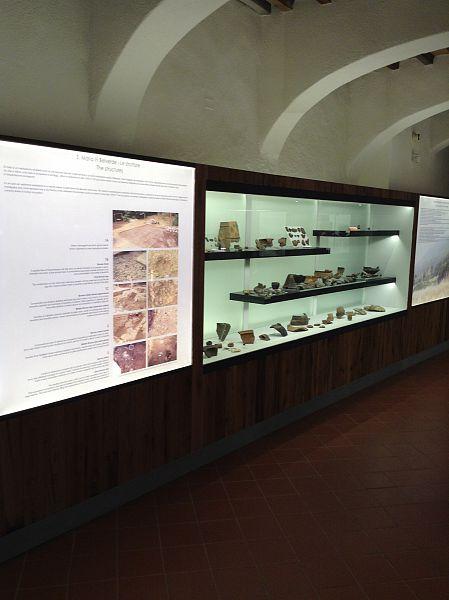 Il moderno allestimento del museo Paleontologico ricco di informazioni