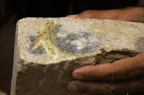 Alireza Askari Chaverdi mostra un frammento di mattone invetriato con figure trovato a Tol-e Ajori (Iran)
