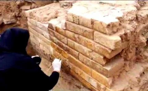 Lo scavo di Tol-e Ajori, in Iran, vicino a Persepoli, ha portato alla scoperta di mattoni invetriati dipinti e a rilievo