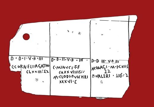 La grafica del catasto A con la posizione dei terreni e dei proprietari all'interno delle celle della centuriazione