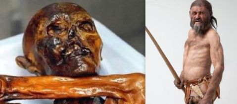 Oetzi, la mummia del Similaun, e una sua ricostruzione al museo di Bolzano