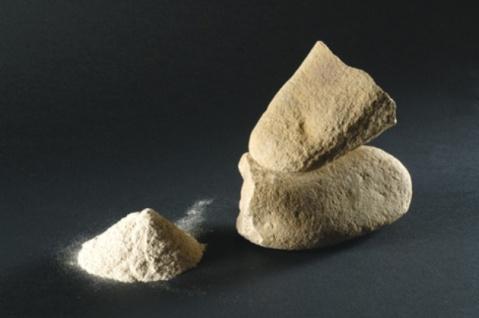 La macina usata dall'Homo Sapiens 30mila anni fa ritrovata a Bilancino nel Mugello, in Toscana