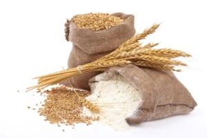 A settembre una mostra a Firenze sulla dieta preistorica illustrerà i risultati della scoperta di Bilancino
