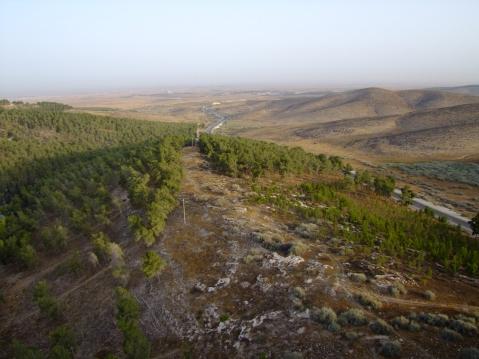 La collina di Tell Halif nel Negev, sud di Israele, a una decina di chilometri da Beersheva