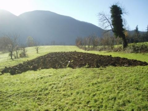 Nell'area archeologica di Marzabotto ripristino dei filari di vite maritata esistenti e semina di parcelle di lino, orzo e favino (foto Fabio Lambertini)