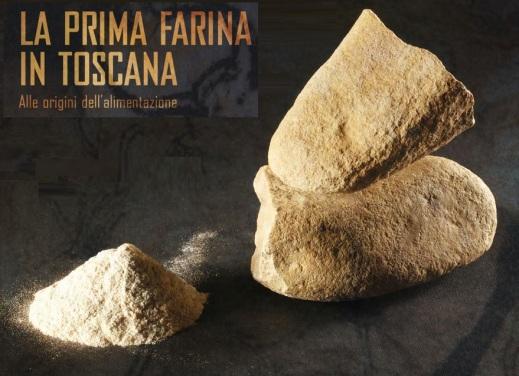 """A Firenze la mostra """"30.000 anni fa la prima farina. Alle origini dell'alimentazione"""""""
