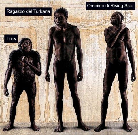 Confronto tra ominidi: Lucy, fossile di 3,2 milioni di anni fa scoperto in Etiopia nel 1974; il ragazzo del Turkana, fossile di 1,6 milioni di anni fa trovato in Kenia nel 1984; e l'Homo Naledi