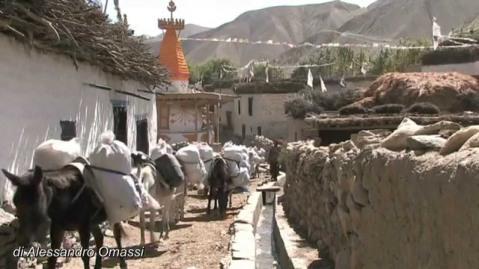 """""""Mustang, il regno nascosto"""", film di Patrice Landes, in programma a Rovereto"""