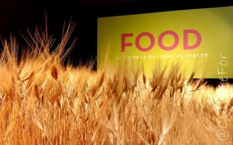 Alimentazione nell'antichità: incontri a margine della mostra