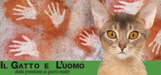"""""""Il Gatto e l'Uomo"""", la mostra aperta alla Gran Guardia di Verona fino al 29 novembre"""