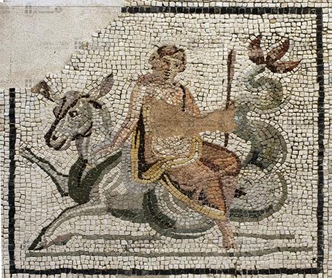 """""""Nereide"""": mosaico romano policromo esposto nella chiesetta dell'ex convento"""