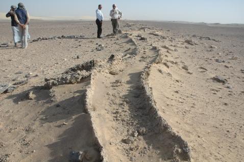 Traccia delle canalizzazioni realizzate nel Tardo impero romano per irrigare quest'area di deserto