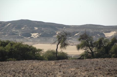 Una veduta dell'oasi di Kharga, 700 chilometri a sud del Cairo (foto Maurizio Zulian)