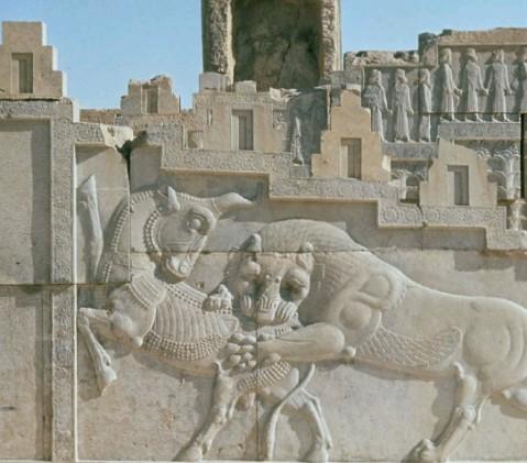 Il leone che azzanna il toro: rilievo achemenide a Persepoli in Iran