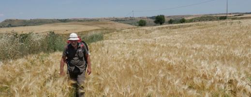 Lo scrittore giornalista Paolo Rumiz ripercorre il tracciato della via Appia (foto Alessandro Scillitani)