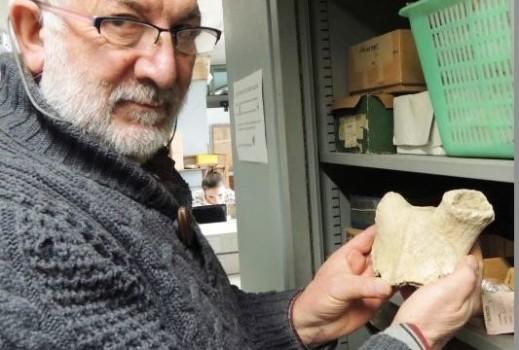 Il prof. Fabio Martini, archeologo preistorico dell'università di Firenze