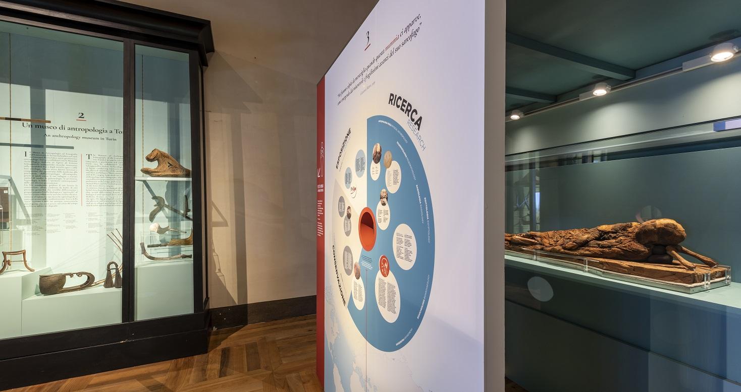 Il Museo Egizio Di Torino E Il Museo Di Antropologia Dell Universita Di Torino Propongono Tre Talk Online Per Approfondire E Riflettere Sui Temi Della Nuova Mostra Temporanea Lo Sguardo Dell Antropologo Archeologiavocidalpassato
